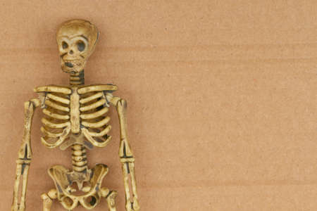 Skeleton on brown textured cardboard background with copy space for your Halloween message