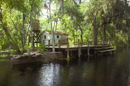 marsh: Neglected home in the Louisana swamp