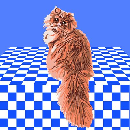 Orange Persian cat sitting on a blue and white checkered tablecloth. Imagens