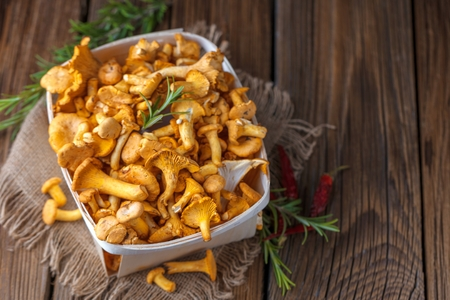 Yellow chanterelle mushrooms on rustic wooden background 스톡 콘텐츠