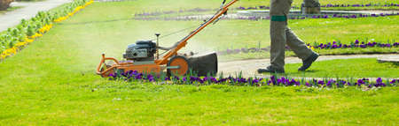 Process of lawn mowing, concept of mowing the lawn, lawnmower cutting grass with gardening tools. 스톡 콘텐츠 - 151605339
