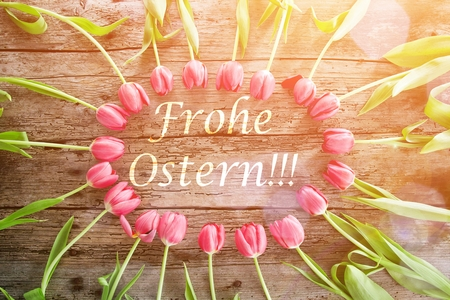 Natural tulips on rustic wooden board, easter decoration Round copyspace with german TEXT Happy Easter