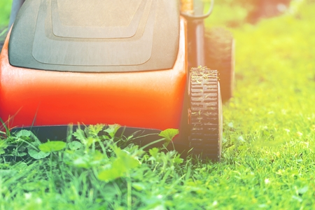 Lawn mower mower grass equipment mowing gardener care work tool. Standard-Bild