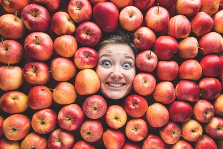Woman with apples, concept for food industry. Face of laughing woman in apple surface Stok Fotoğraf