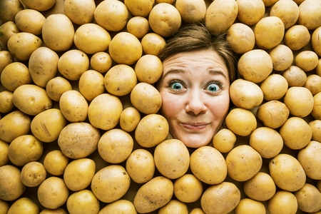Woman with potatoes, concept for food industry. Face of laughing woman in potato plane Reklamní fotografie - 118484862
