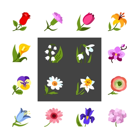 Flowers colorful flat vector icon set. Vector illustration for pattern and background