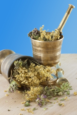 Two mortars with dried herbs on the table  Focus on the front  Blue background  photo