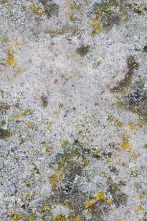 waterless: Close up of a old stone texture background