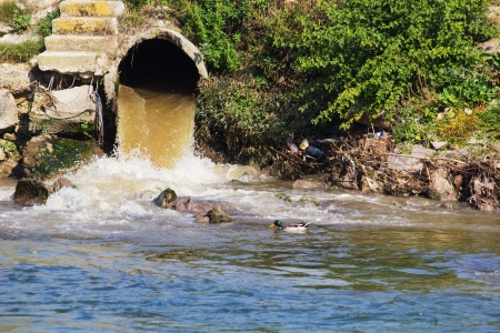 ecological problem: Eco disaster, polluting the river  River Vardar, Skopje, Macedonia