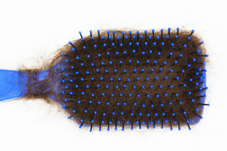 Close up of a hairbrush with lots of lost hair. Stock Photo