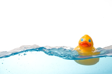 Rubber Duck in Water Stock Photo - 8525574