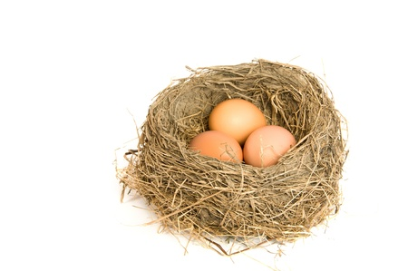 Three brown eggs in a nest with white background Stock Photo - 8550473