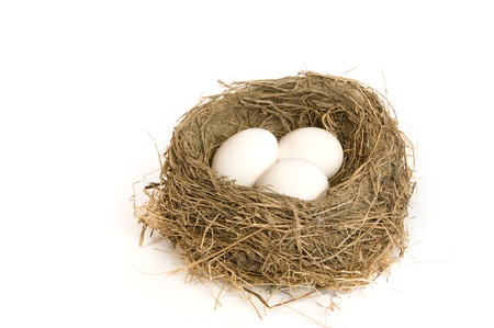 Three white eggs in a nest with white background photo