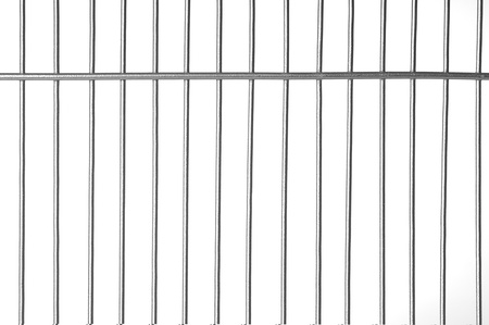 cage: Silver metal bars with white background Stock Photo