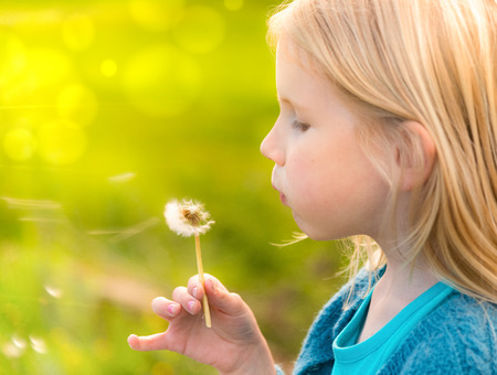 pretty face: Little blonde girl blowing wishes at a dandelion