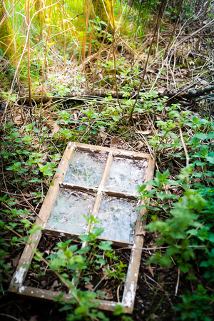 vandalism: Old window frame that has fallen out and is laying on the ground with green plants growing around Stock Photo