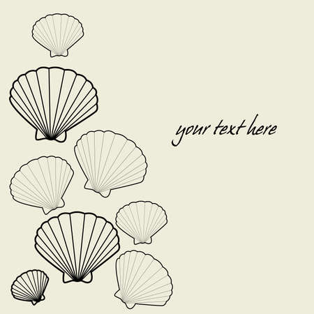 Elegant background with sea shells  Vector
