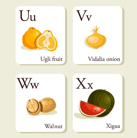 Fruits and vegetables  alphabet cards , illustration, part 6of 7 Vector