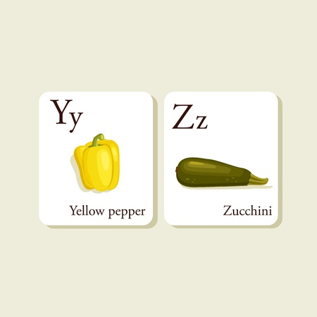 zucchini: Fruits and vegetables  alphabet cards , illustration, part 7of 7 Illustration