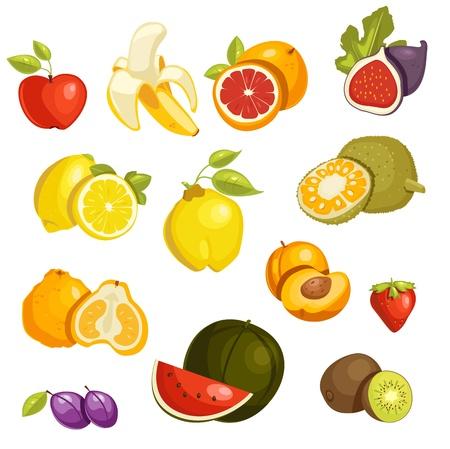 grapefruits: Fruits Set isolated.
