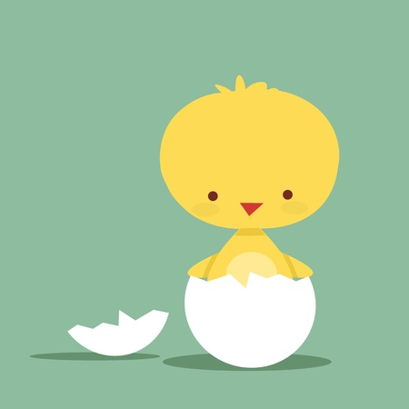 Cute chicken character, vector illustration 일러스트