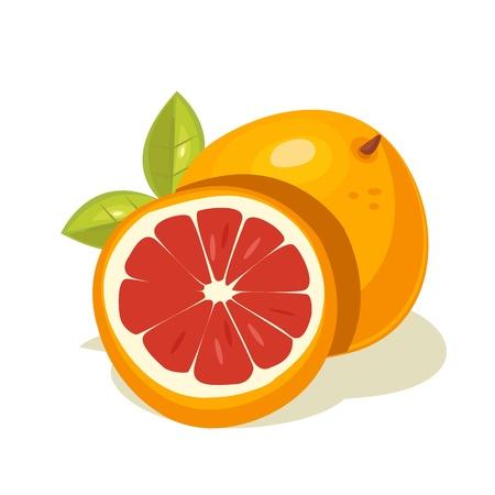 toronja: vector de pomelo