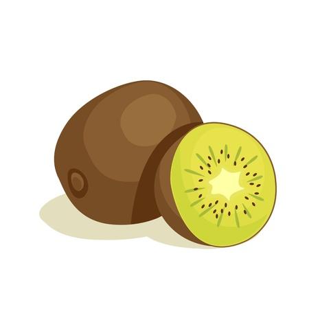 kiwi: kiwi vector