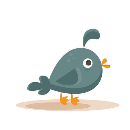 cartoon quail Stock Vector - 9297492