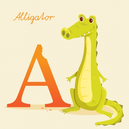 Animal alphabet with alligator, vector illustration Vector