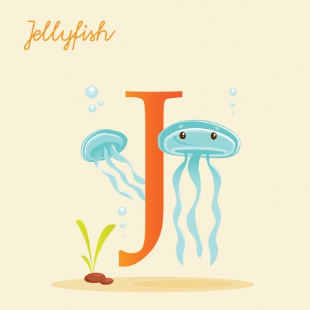 Animal alphabet with jellyfish,  vector illustration Vector