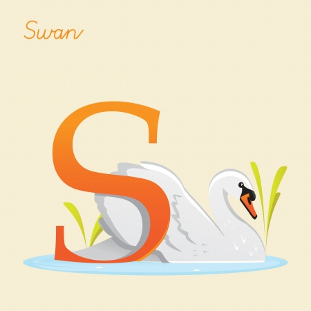 Animal alphabet with swan illustration Vector
