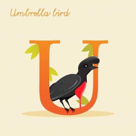 Animal alphabet with umbrella bird illustration Vector