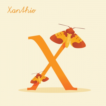Animal alphabet with xanthie illustration Vector