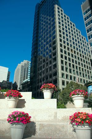 Skyscrapers and landscaping of potted flowers 写真素材