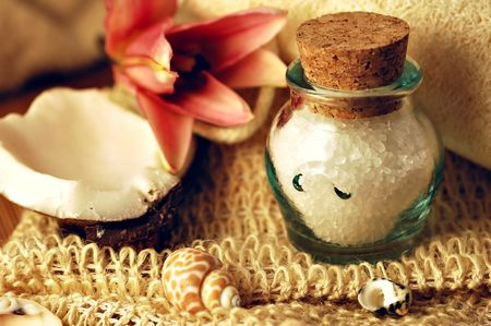 Jar of bath salts with tropical lily, coconut, natural fiber cloth, loofah, and seashells Zdjęcie Seryjne - 760012