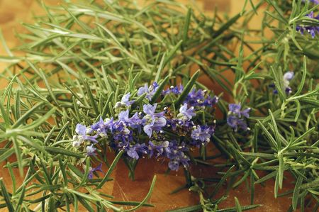 Rosemary picked fresh from the garden on a cutting board in a kitchen