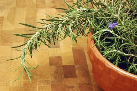 Rosemary picked fresh from the garden in a bowl on a cutting board in a kitchen