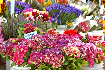 Buckets of flowers for sale in a stall at a farmers market in summer