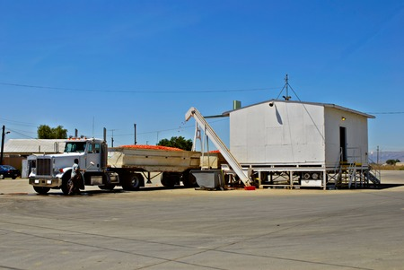 san joaquin valley: Roma tomatoes being loaded onto a semi-truck at a processing plant in Central California