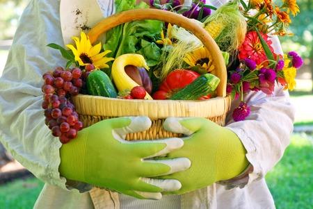 果物、野菜、花、庭から新鮮な満ちている庭師の枝編み細工品バスケットを持って