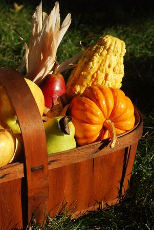 Vintage wooden fruit basket filled with autumn fruits and vegetables outdoors in sunlight