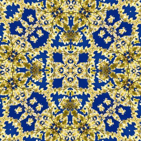 Kaleidoscope created from a photo of an Eastern Flowering Dogwood tree -- Cornus Florida