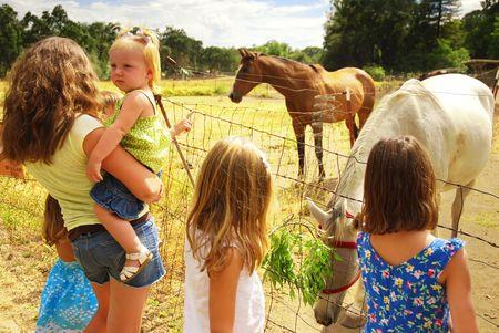 牧場で負傷者の馬で子供たちのグループ 写真素材
