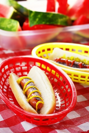 Hot dogs in bun with mustard, ketchup, pickle relish in plastic basket on picnic table photo