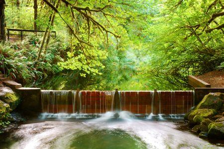 Water flows over a salmon run dam after recent rainfall Stock Photo - 5619449