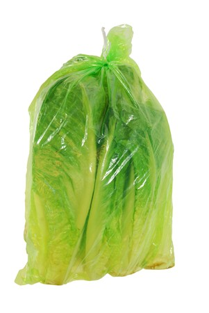 romaine: Green bag with heads of romaine lettuce