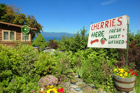 flathead: Sign advertising cherries for sale at a cherry orchard with Flathead Lake in the background