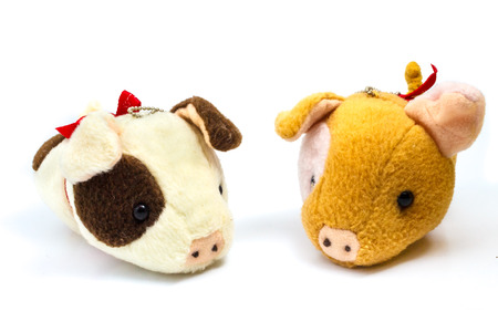 soft toy: Soft Toy Piggy on Isolated White Background