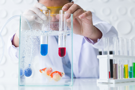 asian doctor diagnose fish in laboratory, animal medical concept