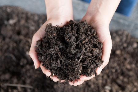 close up hands holding and caring soil, environment heal earth and save the world concept